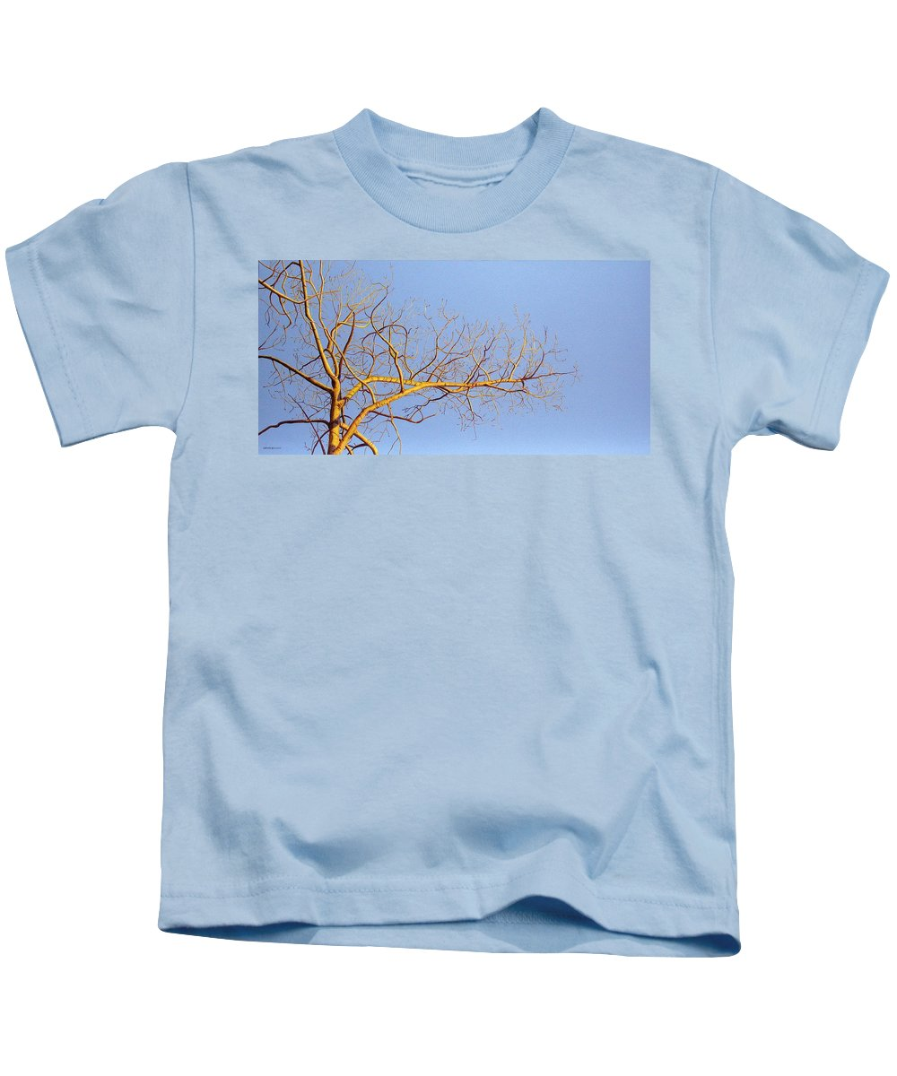 Aspen Painting Kids T-Shirt featuring the painting Aspen In The Autumn Sun by Elaine Booth-Kallweit
