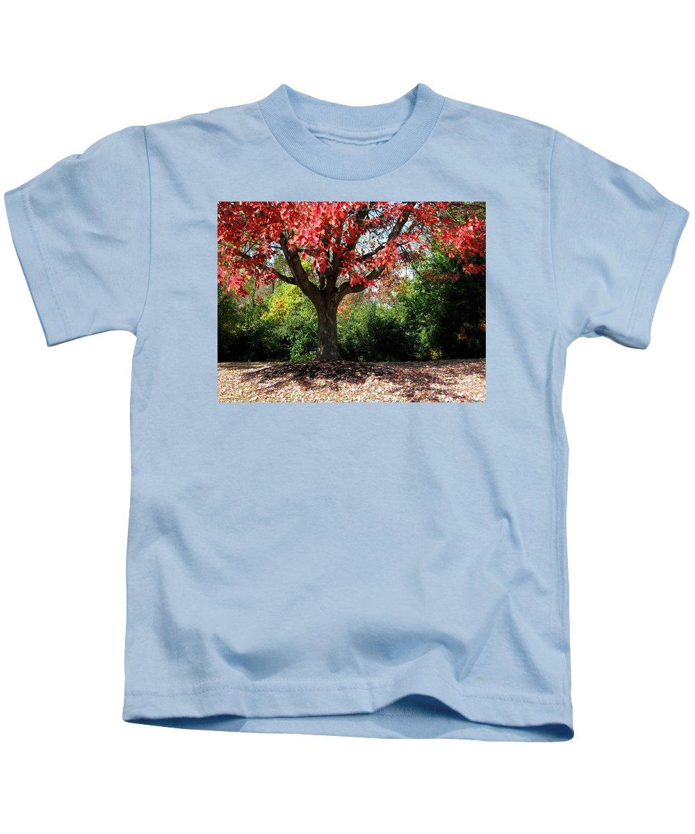 Autumn Kids T-Shirt featuring the photograph Autumn Ablaze by Ann Horn