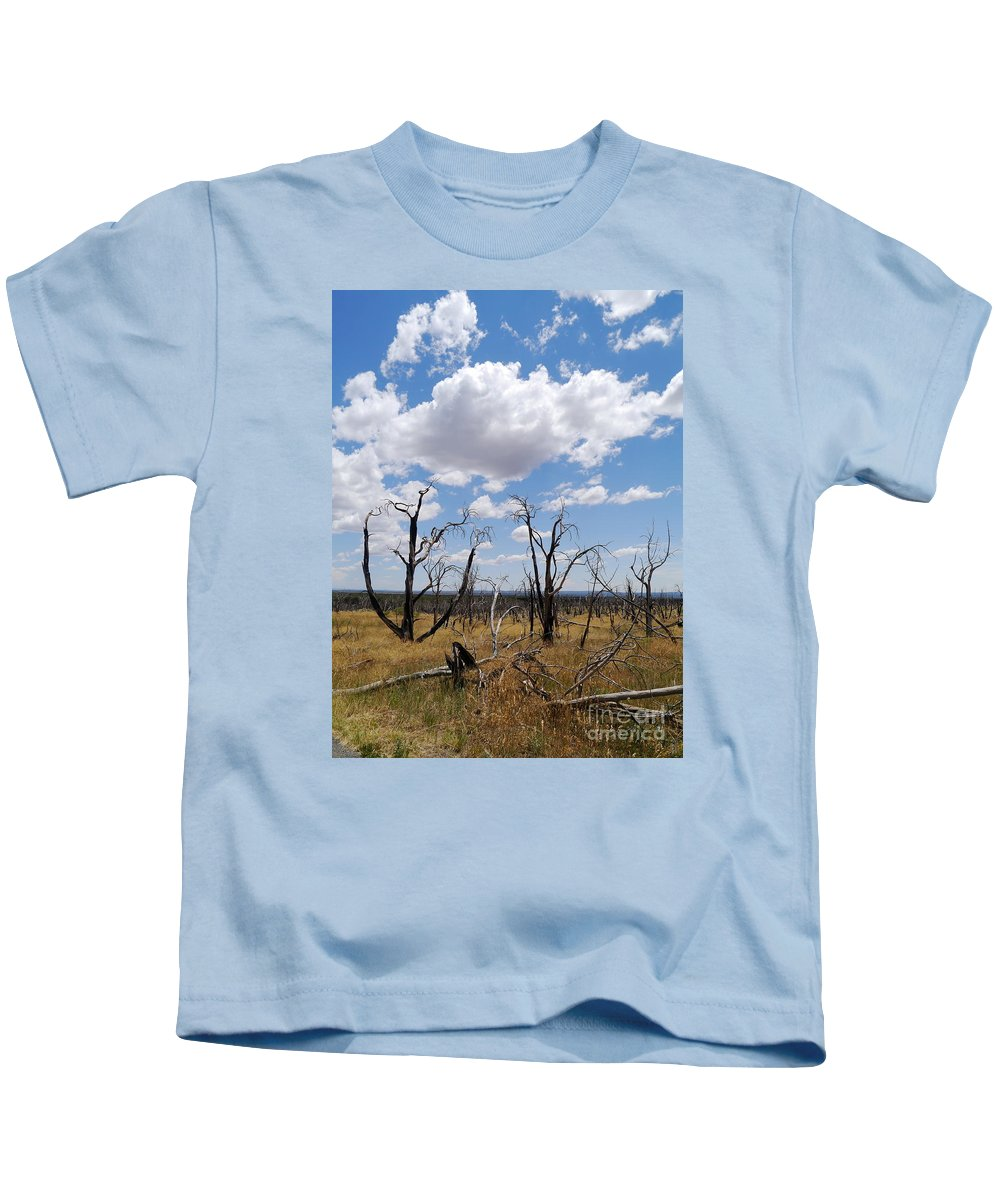 Clouds Kids T-Shirt featuring the photograph Burned Trees On Colorado Plateau by Christiane Schulze Art And Photography