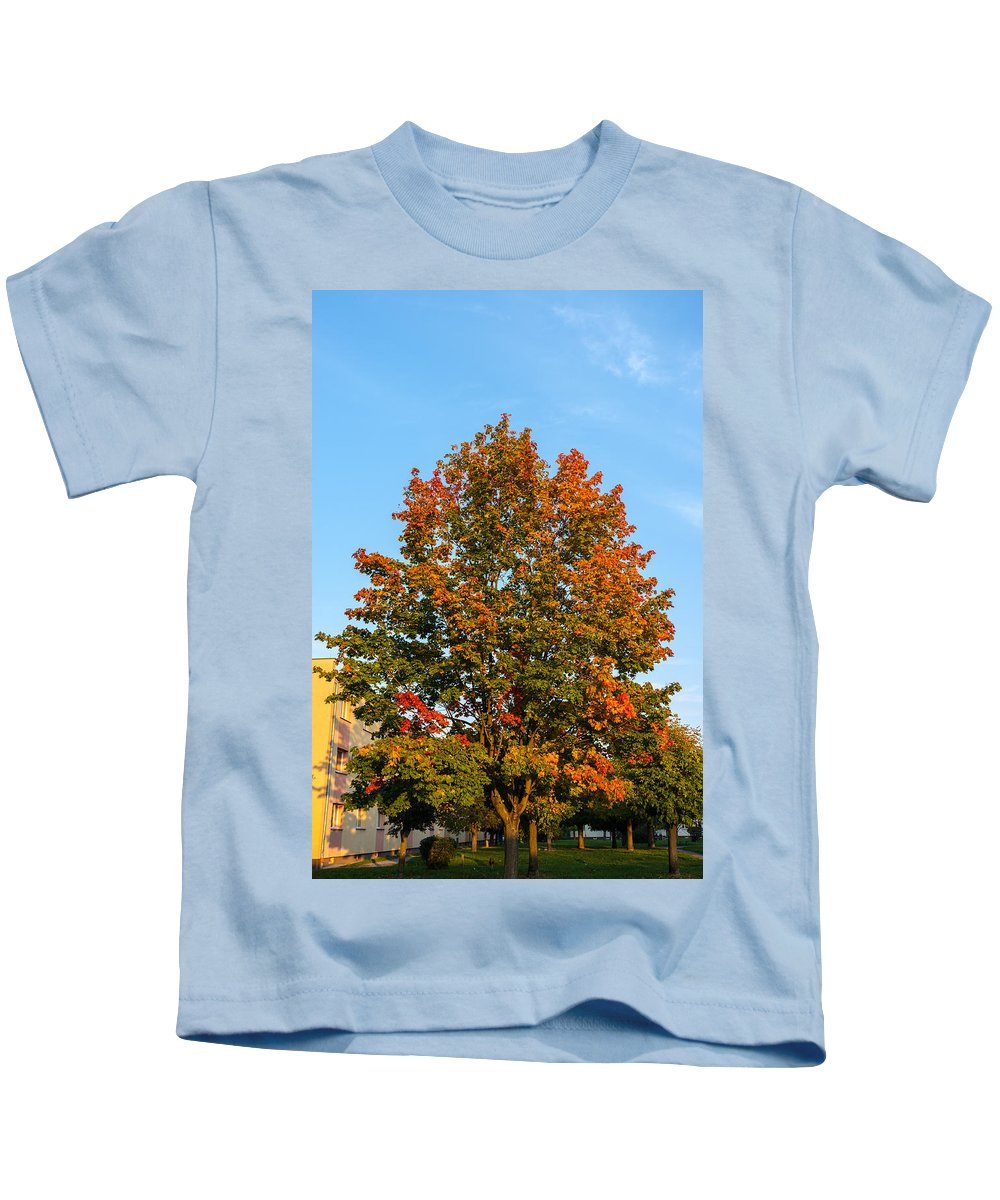 Colours Of Autumn Kids T-Shirt featuring the photograph Colours Of Autumn by Tgchan