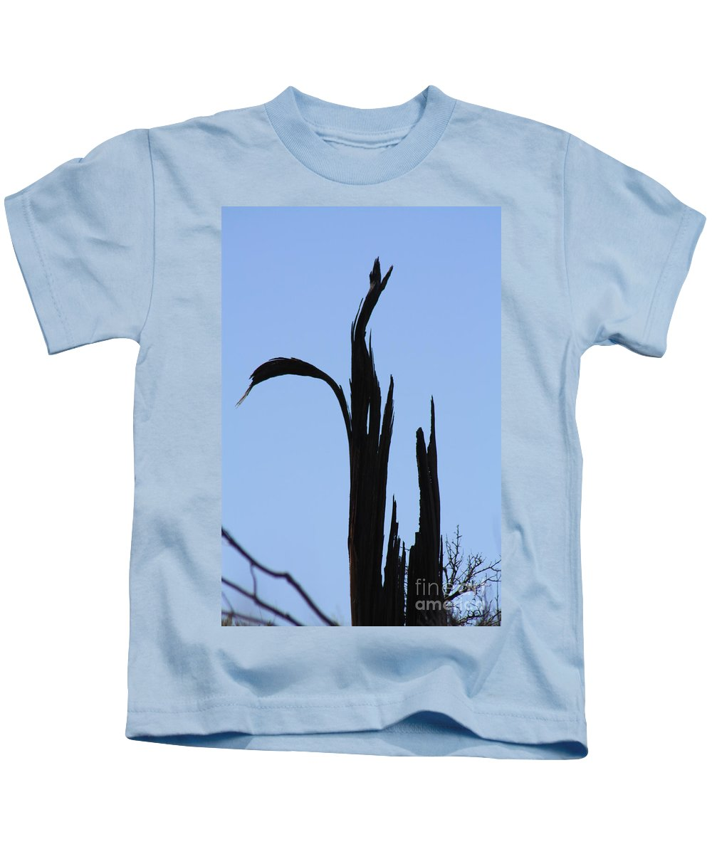 Crane Kids T-Shirt featuring the photograph Crane Wood by Brandi Maher