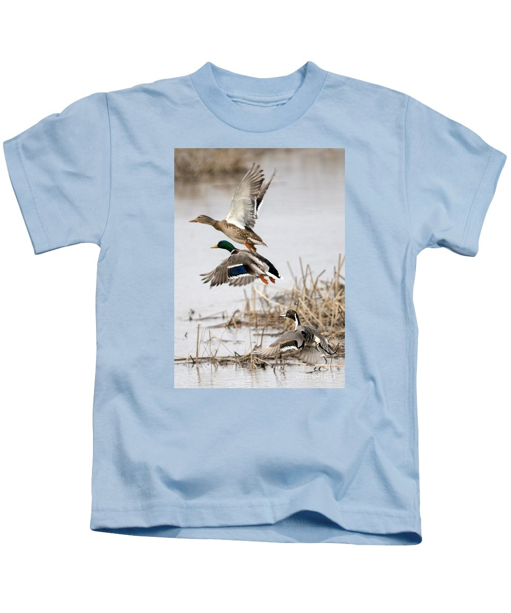 Ducks Kids T-Shirt featuring the photograph Crowded Flight Pattern by Mike Dawson