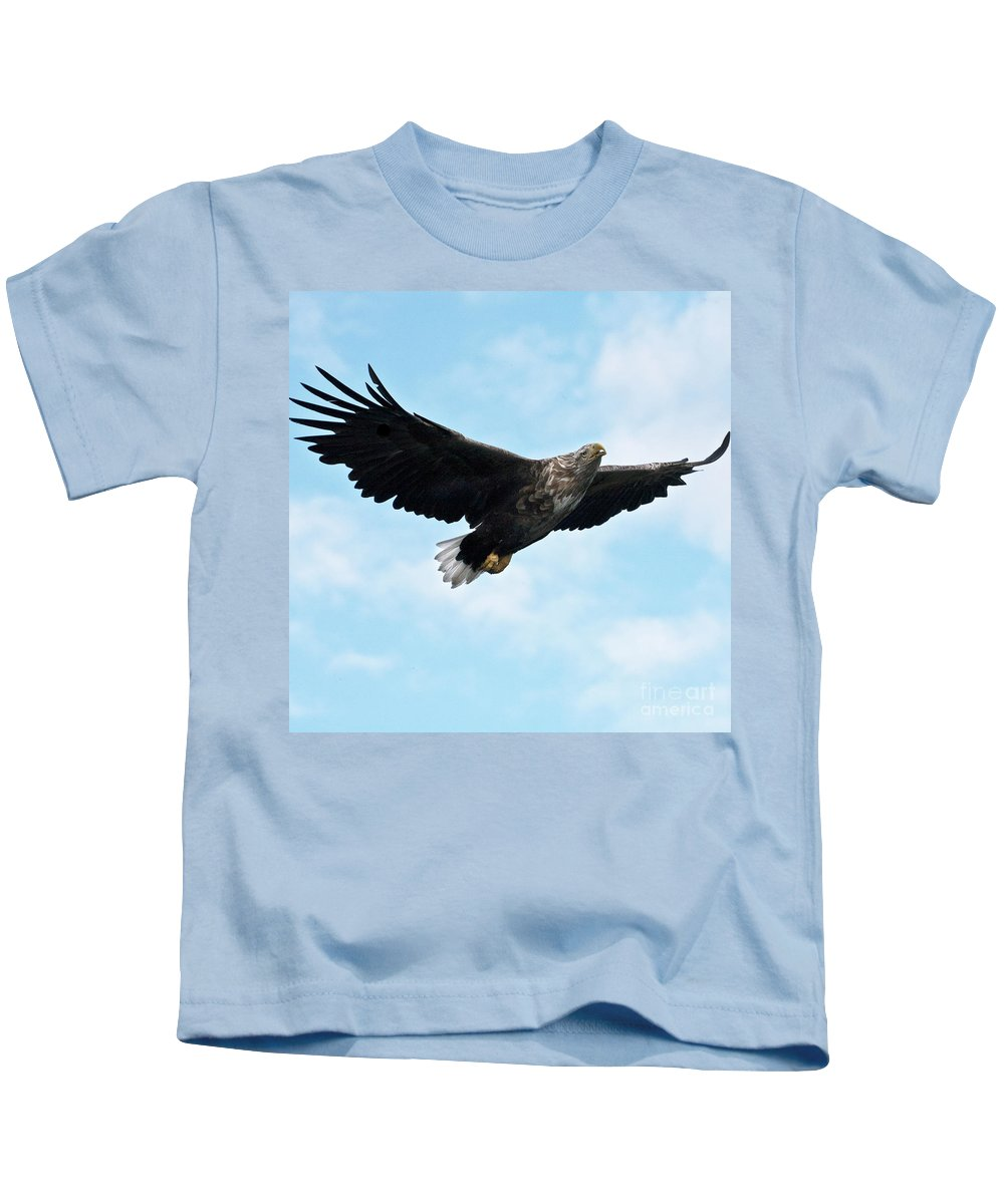 White_tailed Eagle Kids T-Shirt featuring the photograph European Flying Sea Eagle 7 by Heiko Koehrer-Wagner