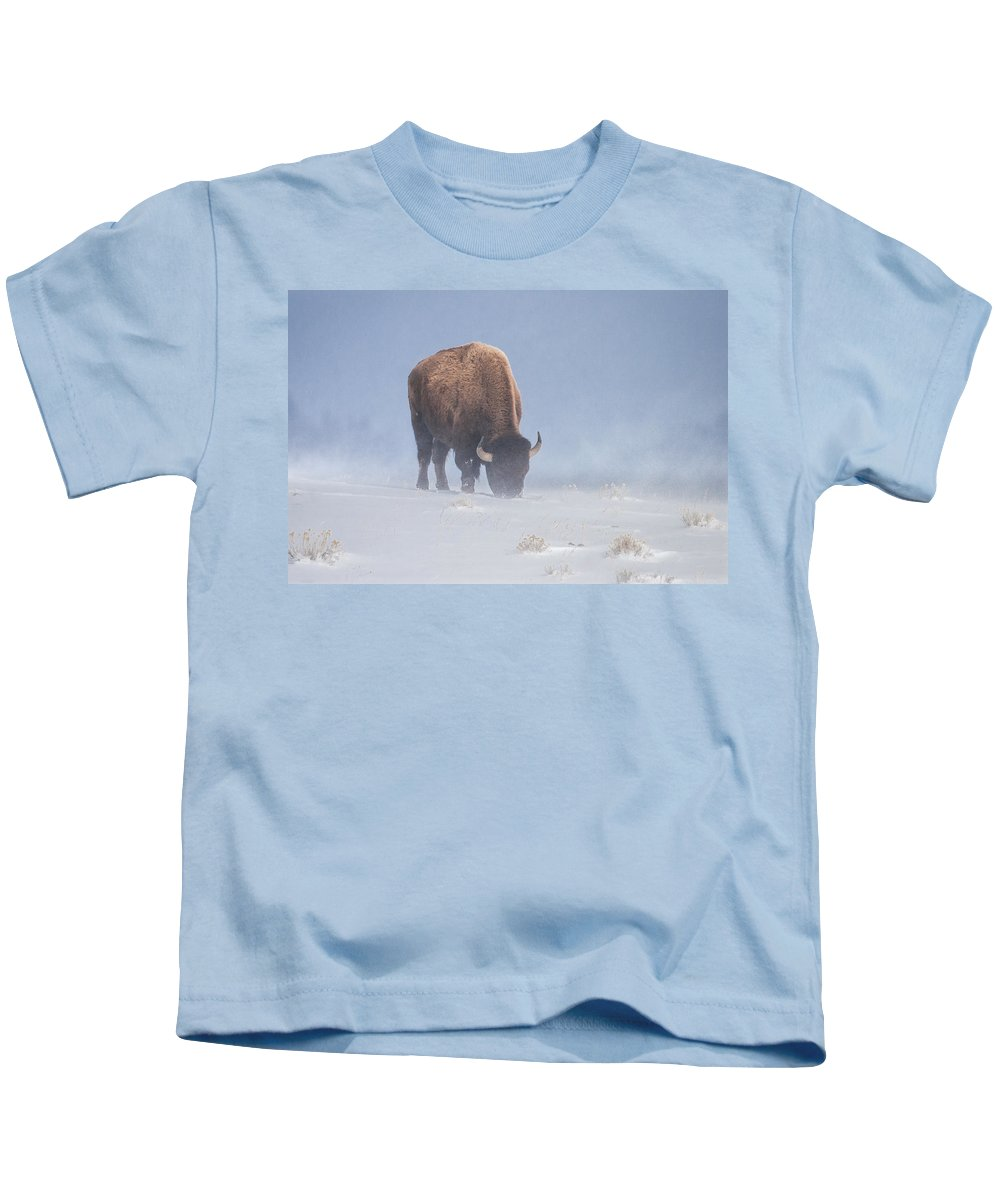Bison Kids T-Shirt featuring the photograph Faces The Blizzard by Jack Bell