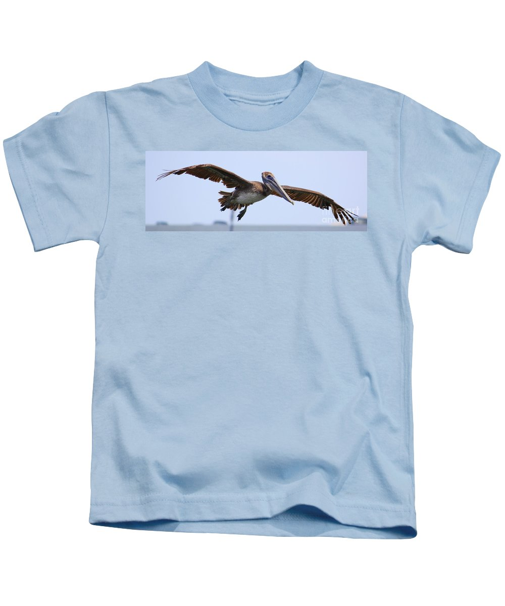 Pelican In Flight Kids T-Shirt featuring the photograph Flying Pelican Panorama by Carol Groenen