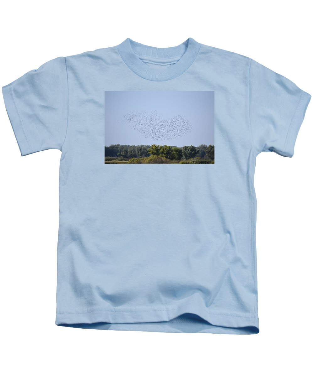Birds Kids T-Shirt featuring the photograph Four And Twenty Blackbirds by Bonfire Photography