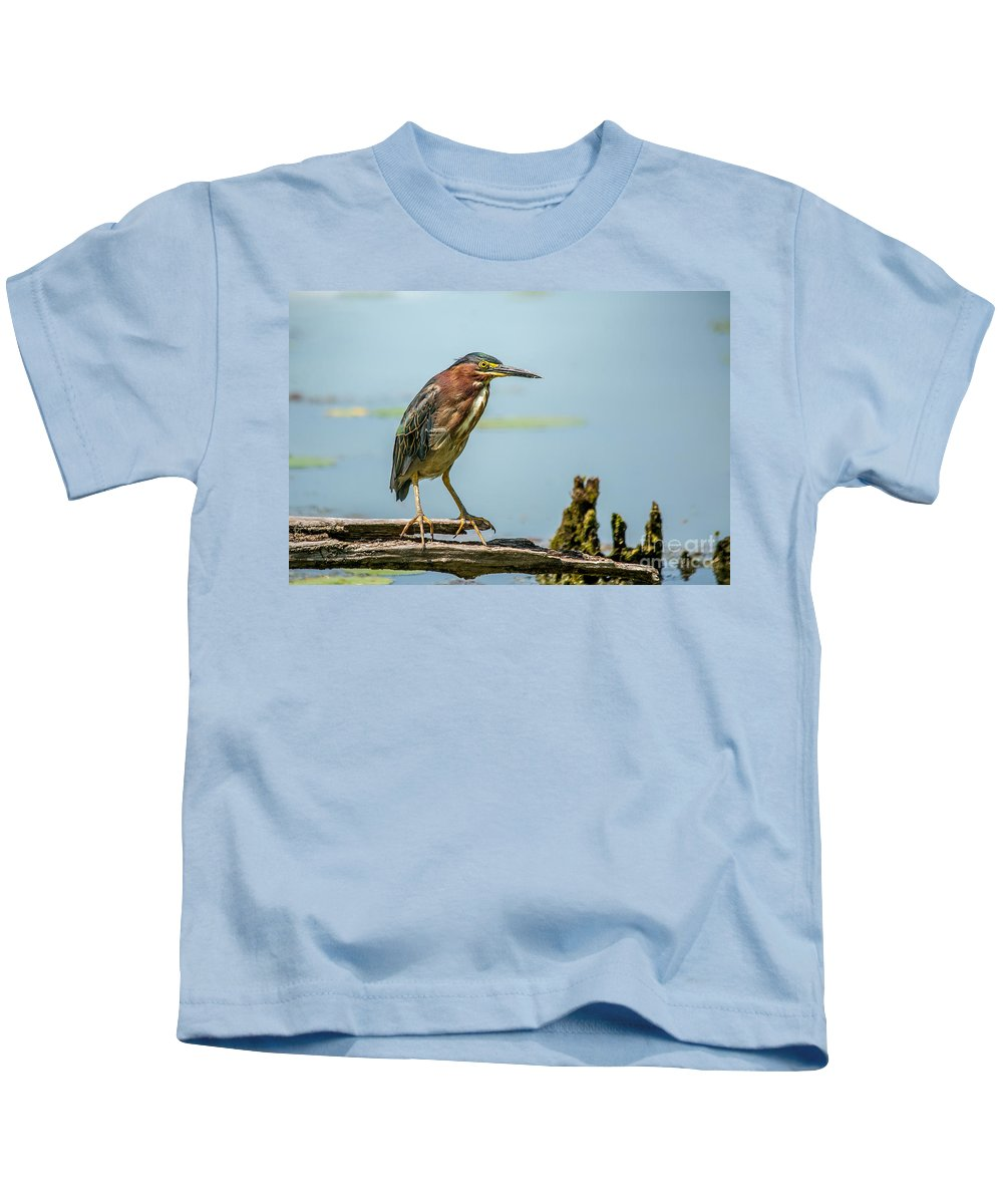 Green Feathers Kids T-Shirt featuring the photograph Green Heron Pose by Cheryl Baxter