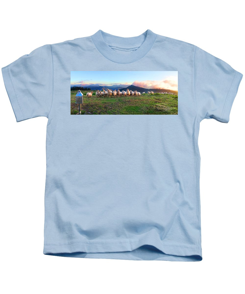 Sheep Kids T-Shirt featuring the photograph Herd Of Sheep In The Sunset by Weston Westmoreland