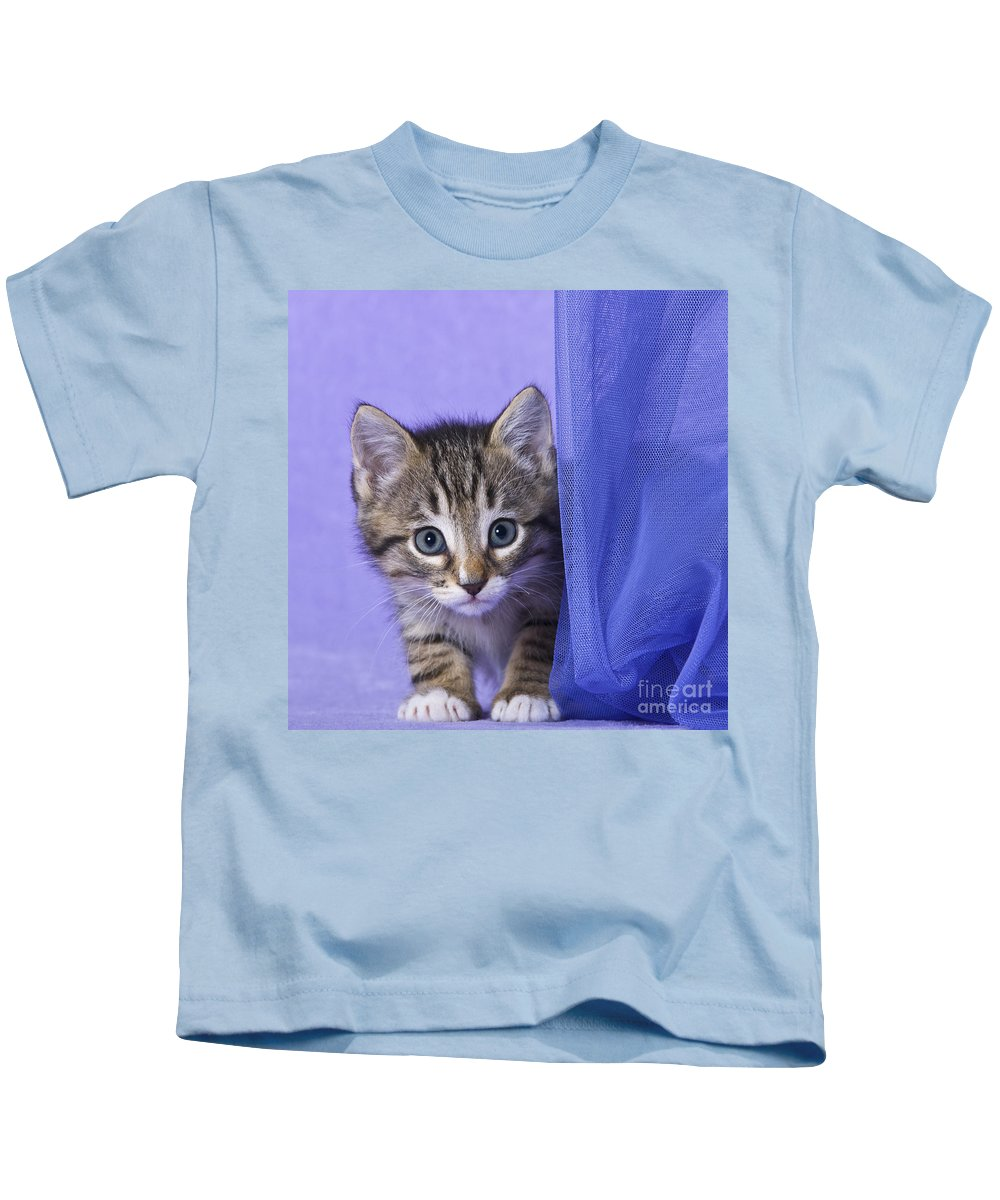 Cat Kids T-Shirt featuring the photograph Kitten With A Curtain by Jean-Louis Klein and Marie-Luce Hubert