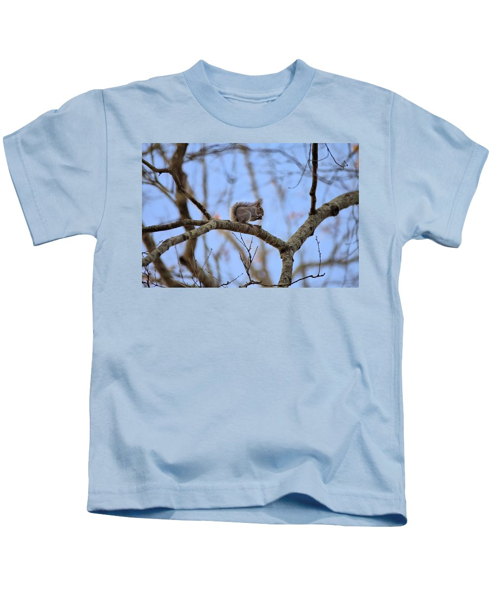 7609 Kids T-Shirt featuring the photograph Mister Squirrel by Gordon Elwell