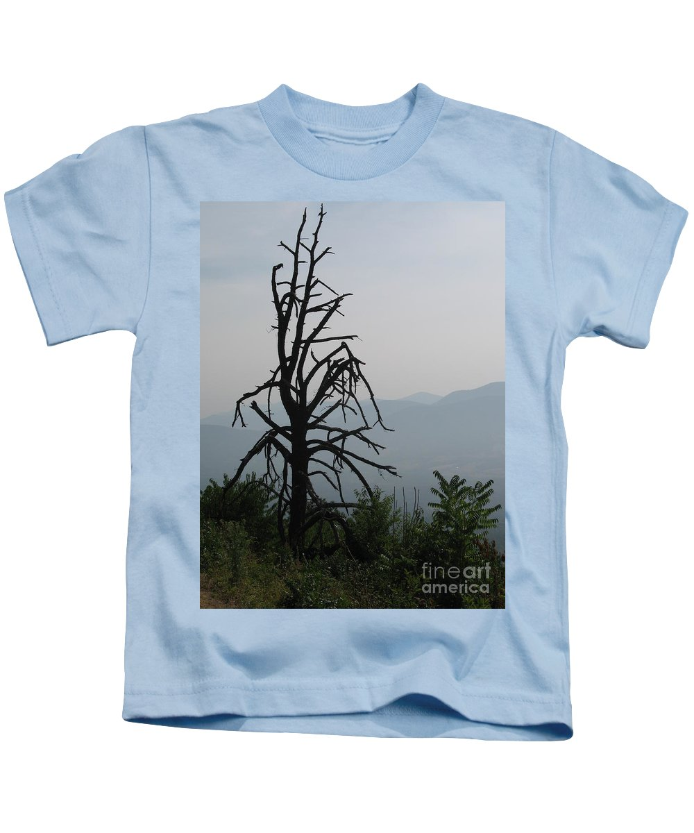 Mist Kids T-Shirt featuring the photograph Misty Morning by Christiane Schulze Art And Photography