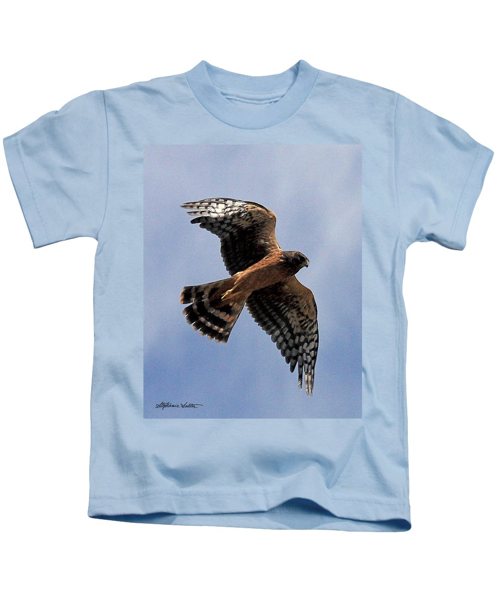 Nature Kids T-Shirt featuring the photograph Northern Harrier by Stephanie Salter