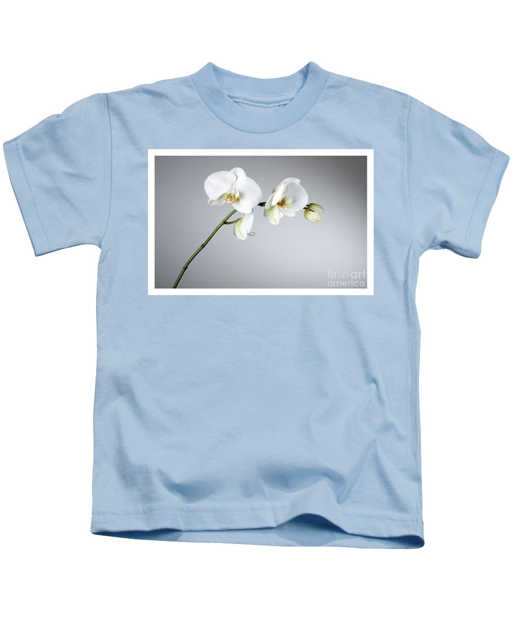 White Orchids On A Grey Background Kids T-Shirt featuring the photograph Orchid 1a by Mauro Celotti