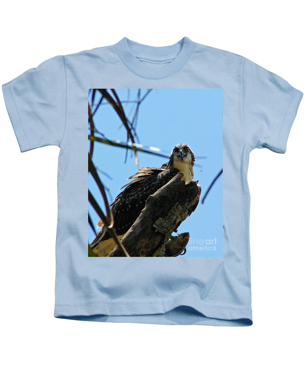 Osprey Kids T-Shirt featuring the photograph Osprey 1 by Nancy L Marshall