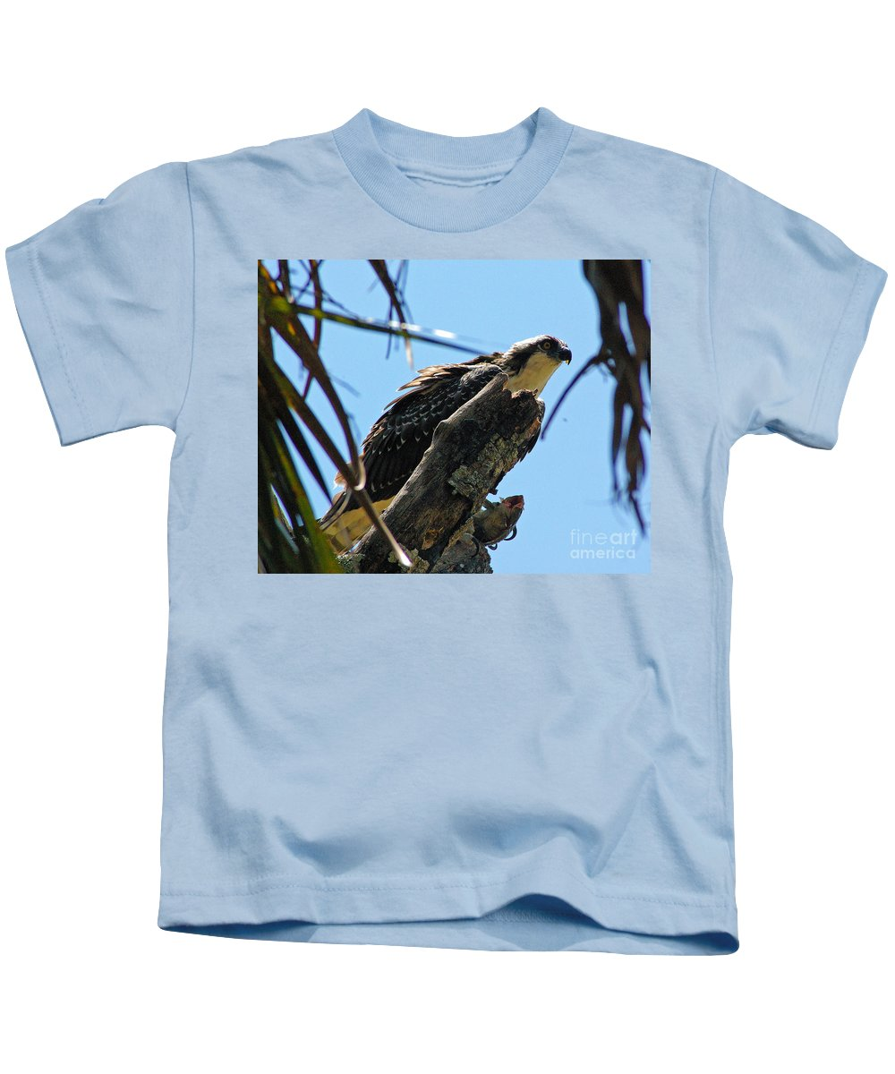 Osprey Kids T-Shirt featuring the photograph Osprey 2 by Nancy L Marshall