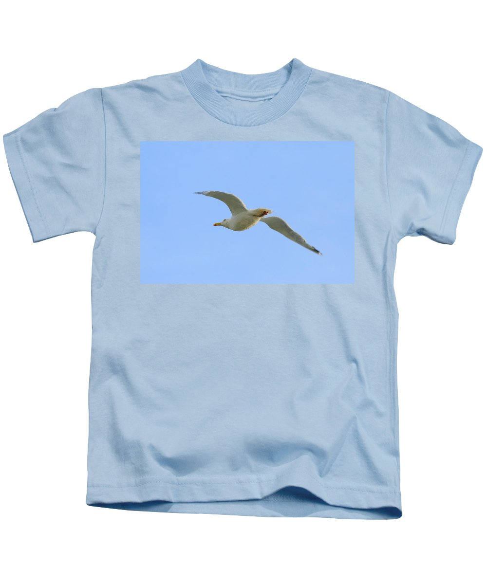 Flying Seagull Kids T-Shirt featuring the photograph Passing By by Neal Eslinger