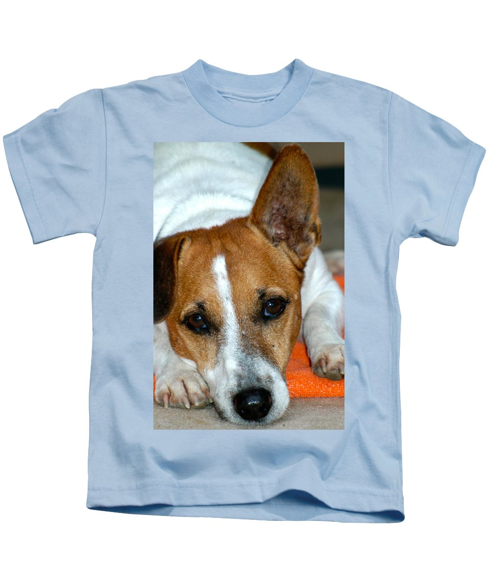Dog Kids T-Shirt featuring the photograph Scrappy The Jack Russell by Lehua Pekelo-Stearns