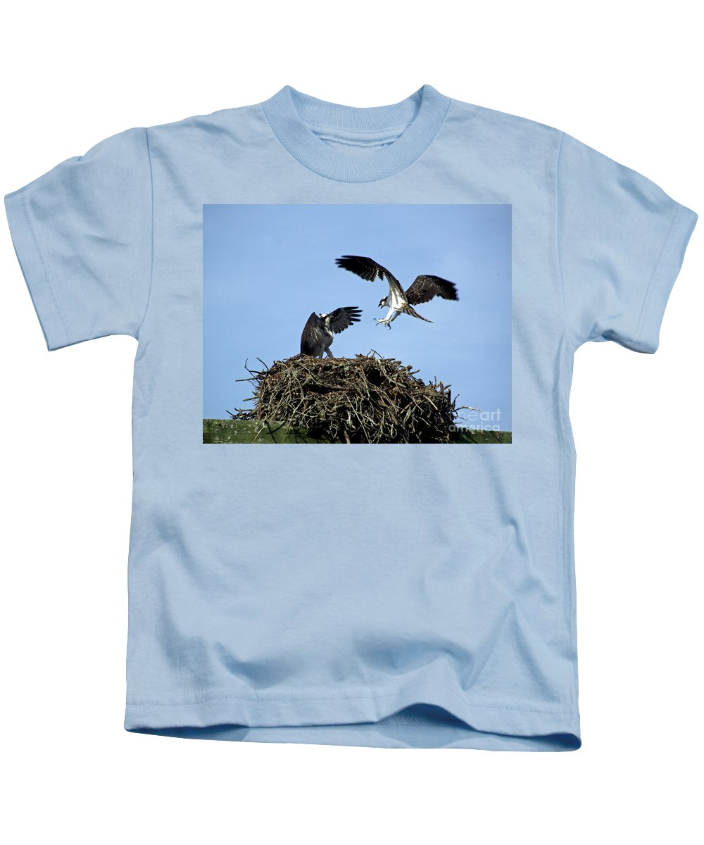 Osprey Kids T-Shirt featuring the photograph Sibling Rivalry by CapeScapes Fine Art Photography
