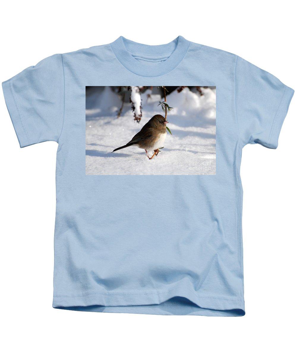 Snow Kids T-Shirt featuring the photograph Snow Bird by Todd Hostetter