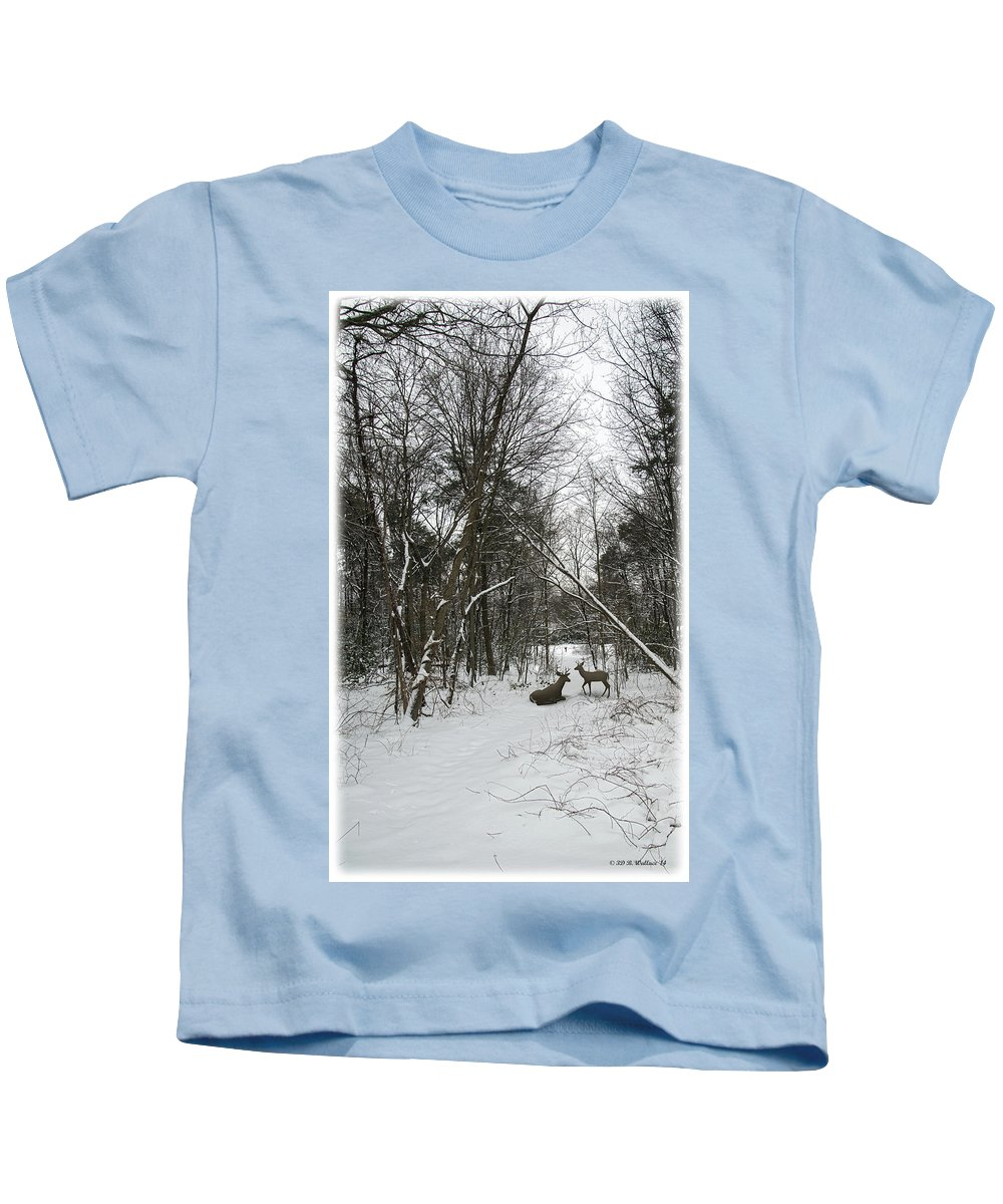 2d Kids T-Shirt featuring the photograph Snowy Wooded Path by Brian Wallace