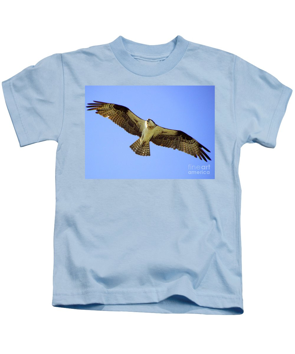 Cape Cod Osprey Kids T-Shirt featuring the photograph Soaring by CapeScapes Fine Art Photography