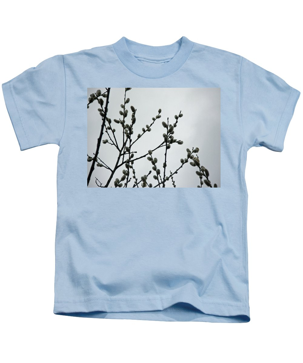 pussy Willow Kids T-Shirt featuring the photograph Soft Pussy Willows - Hard Gray Sky by Mother Nature