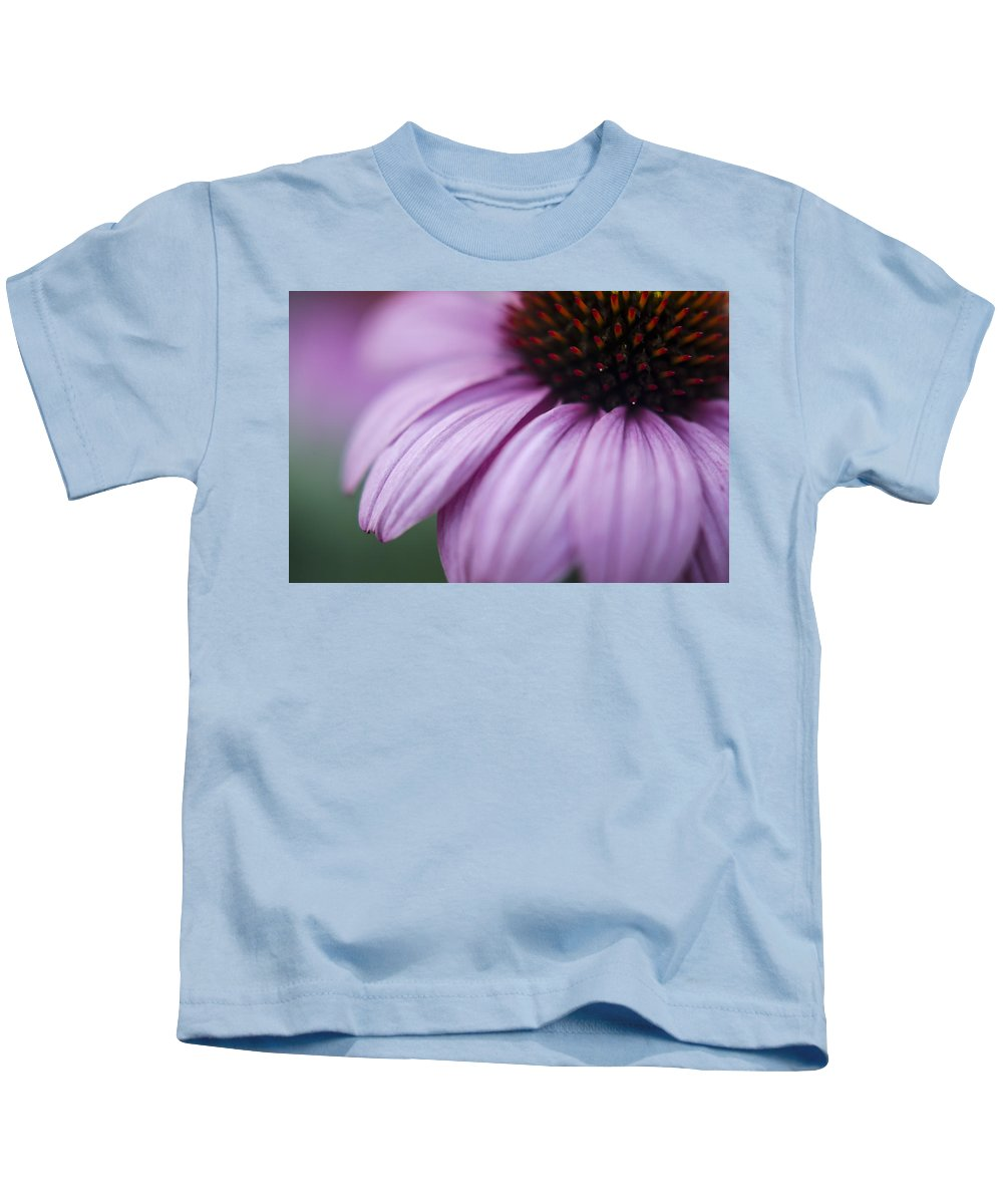 Echinacea Purpurea Kids T-Shirt featuring the photograph Softly by Heather Applegate