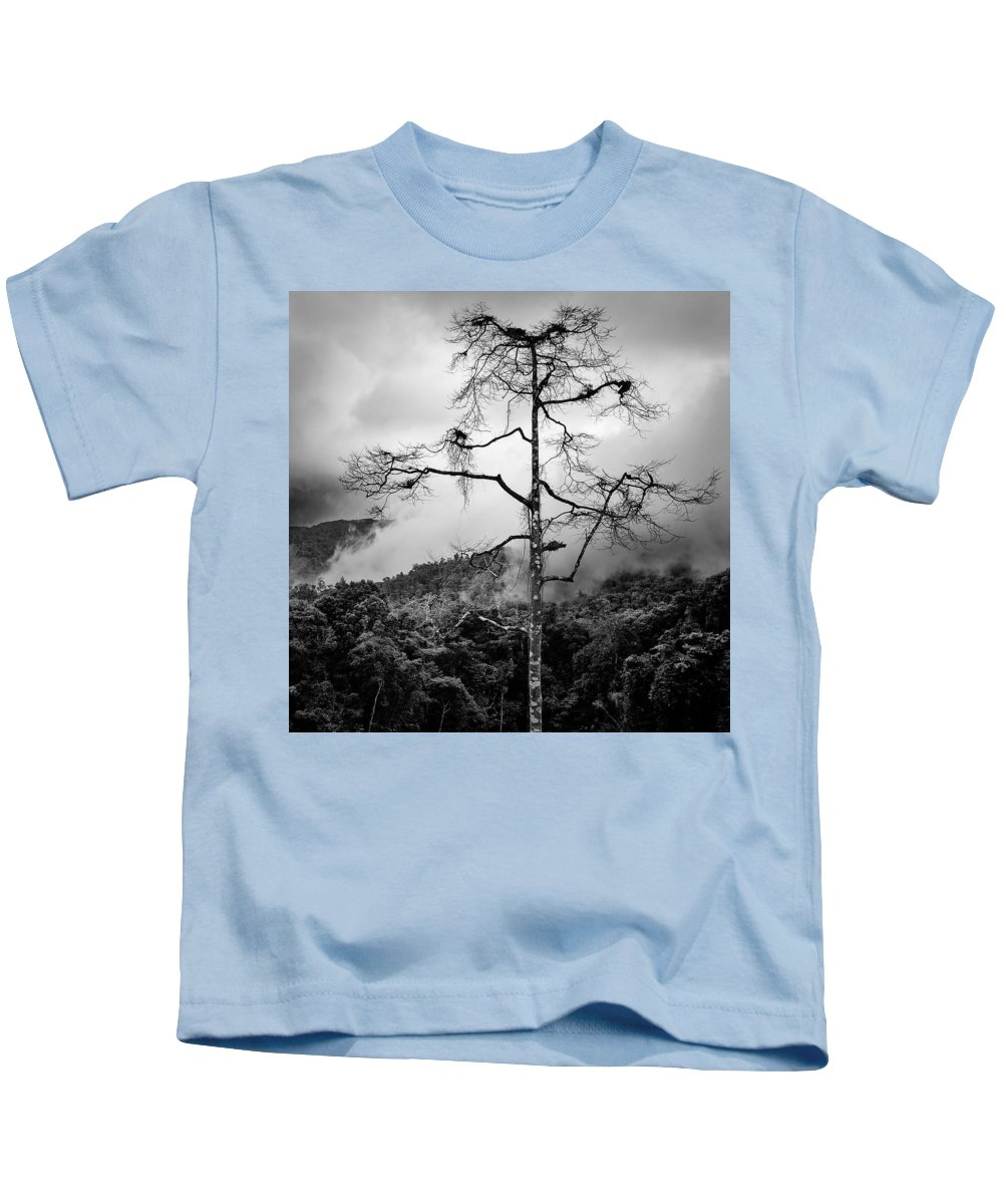 Cameron Highlands Kids T-Shirt featuring the photograph Solitary Tree by Dave Bowman