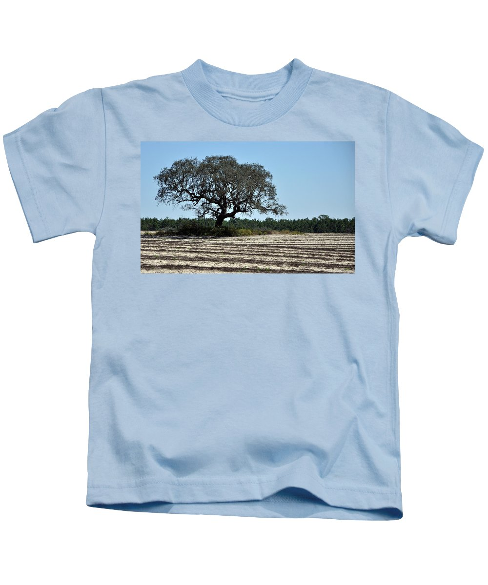 Field Kids T-Shirt featuring the photograph Tree In Plowed Field by Randi Kuhne