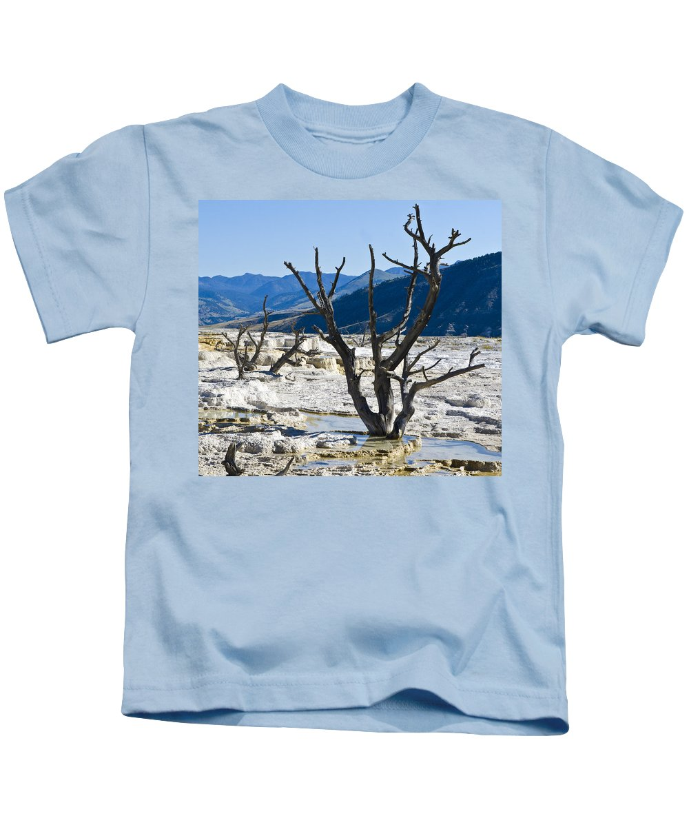 Yellowstone National Park Kids T-Shirt featuring the photograph Tree Remains by Jon Berghoff