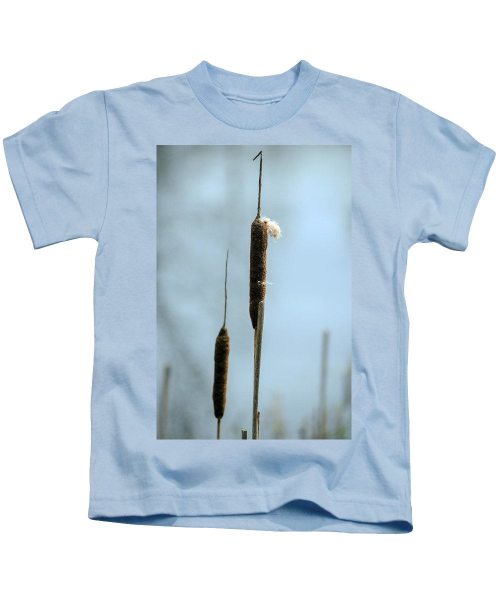 Cattails Kids T-Shirt featuring the photograph Two Cat Tails by Tikvah's Hope