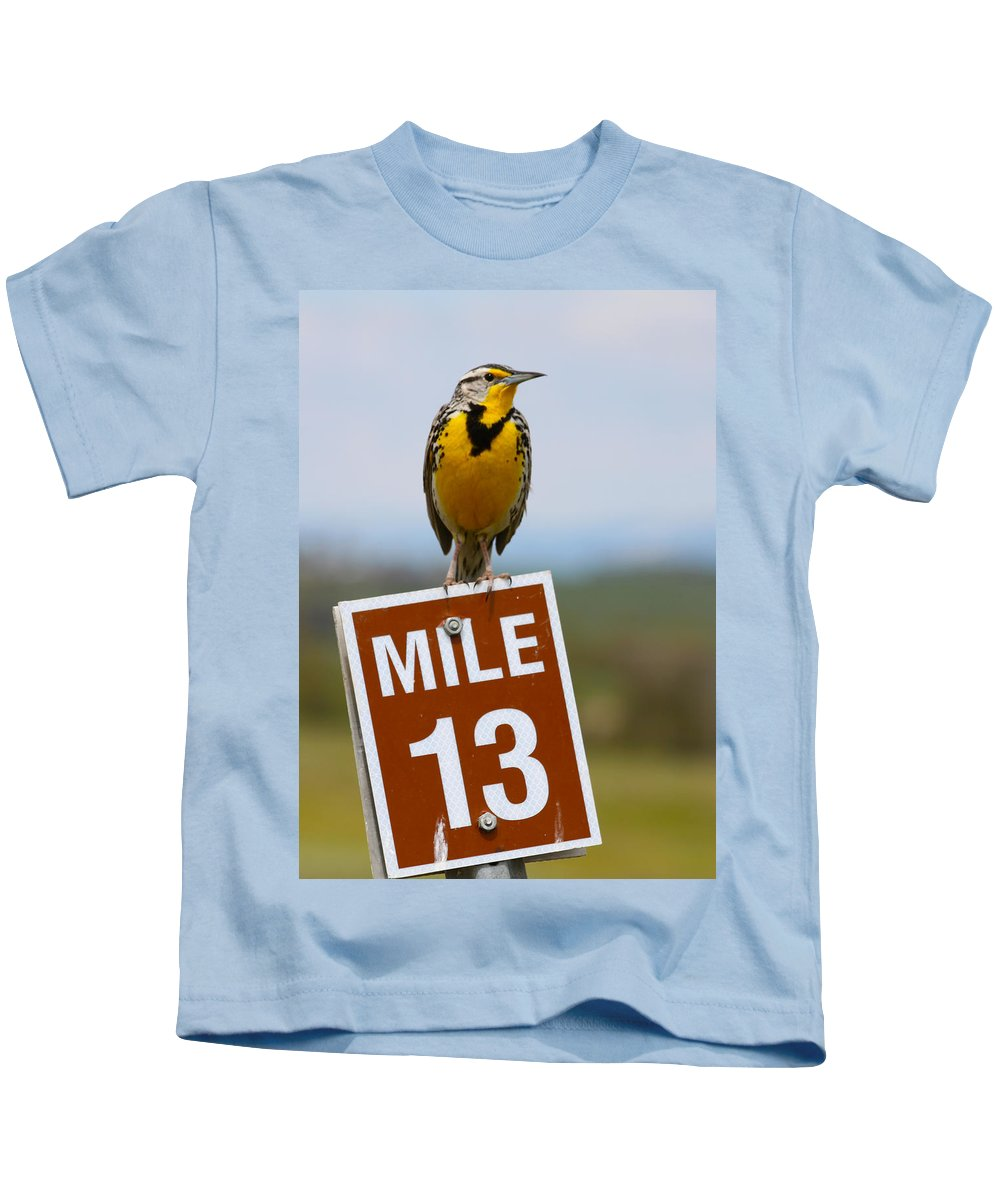 Wild Kids T-Shirt featuring the photograph Western Meadowlark On The Mile 13 Sign by Karon Melillo DeVega