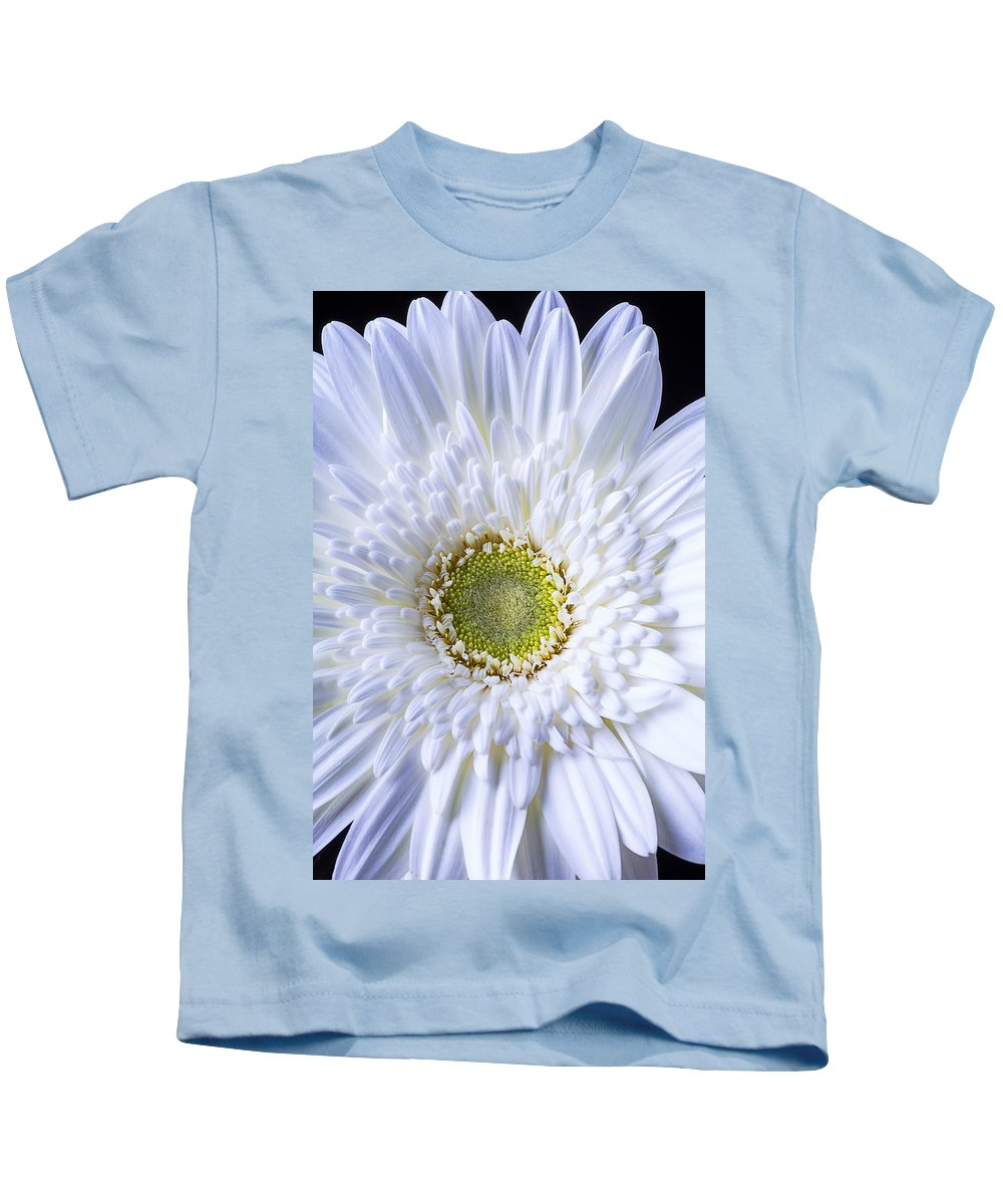 White Gerbera Daisy Kids T-Shirt featuring the photograph White Daisy Close Up by Garry Gay