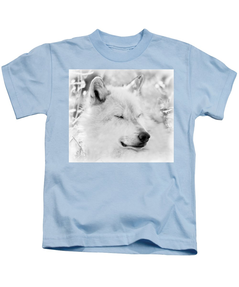 Wolves Kids T-Shirt featuring the photograph White Wolf Shut Eye by Athena Mckinzie