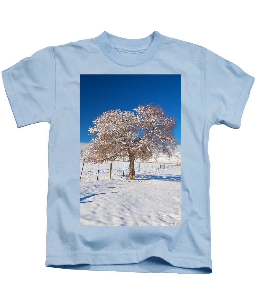 Tree Kids T-Shirt featuring the photograph Winter Season On The Plains Portrait by James BO Insogna