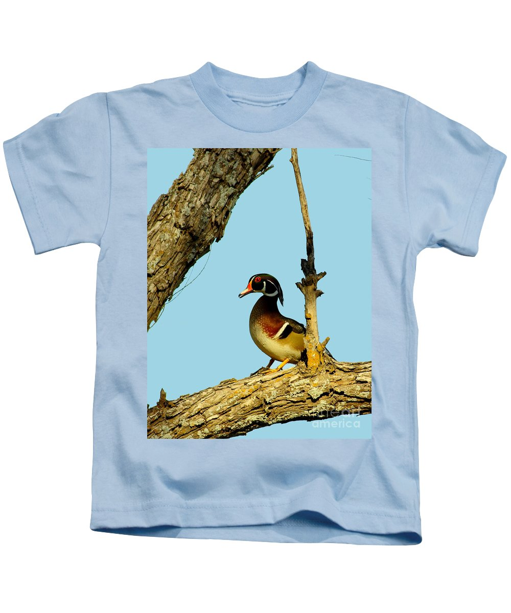 Animal Kids T-Shirt featuring the photograph Wood Duck Drake In Tree by Robert Frederick