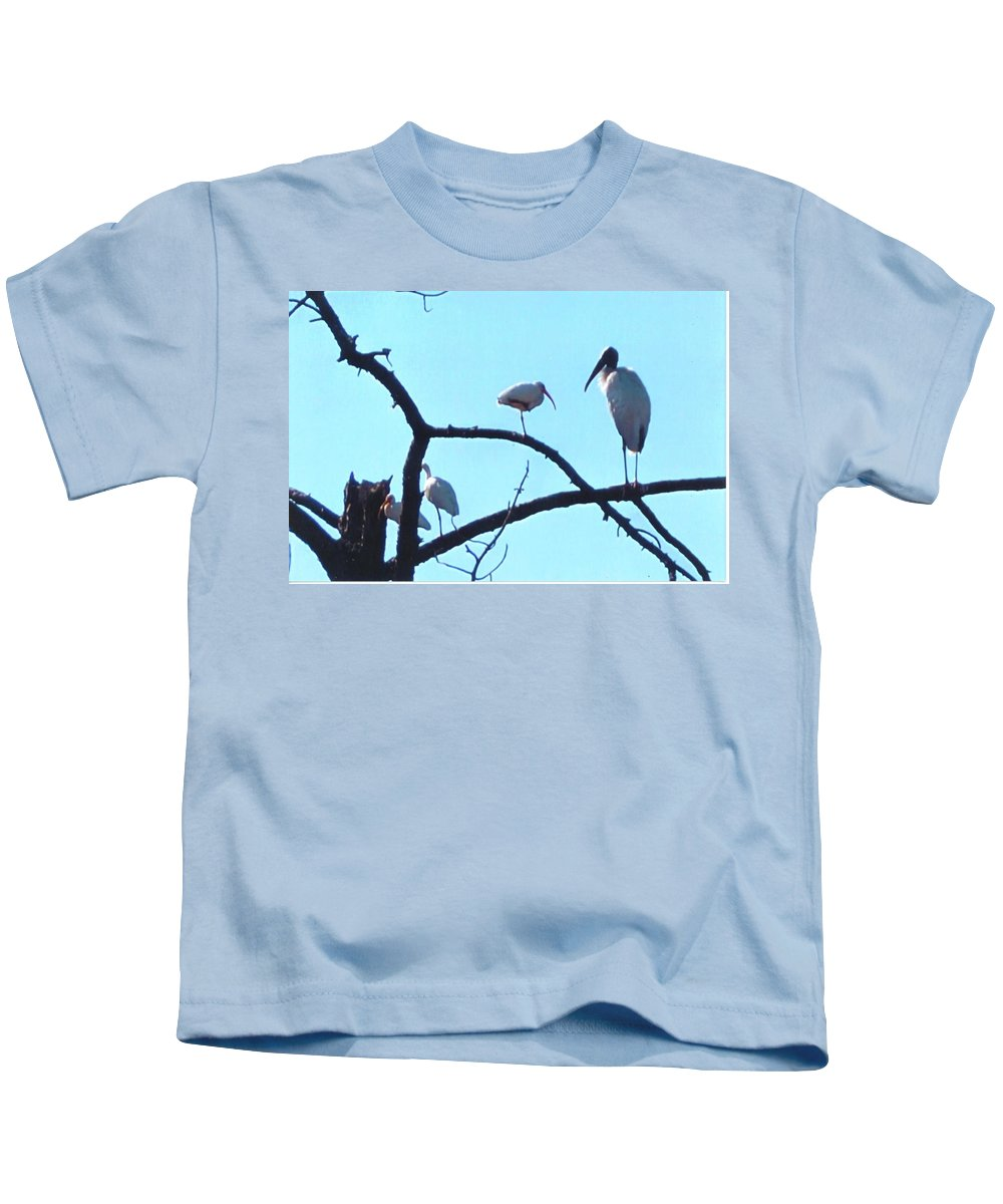 Sharing Tree Perch In N.ft.myers Kids T-Shirt featuring the photograph Wood Stork And Ibis by Robert Floyd