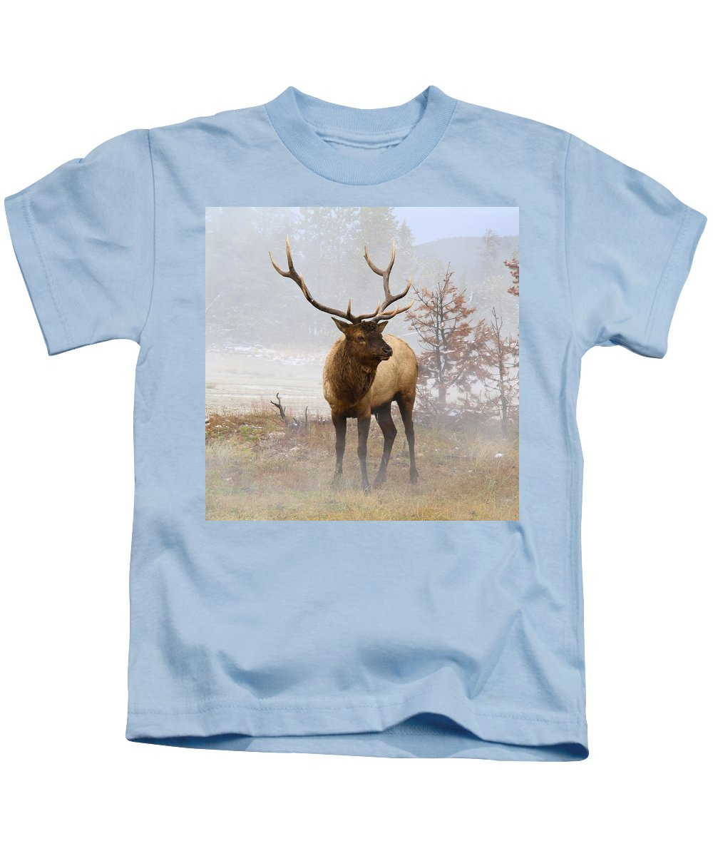 National Park Kids T-Shirt featuring the photograph Yellowstone Bull Elk by Ed Riche