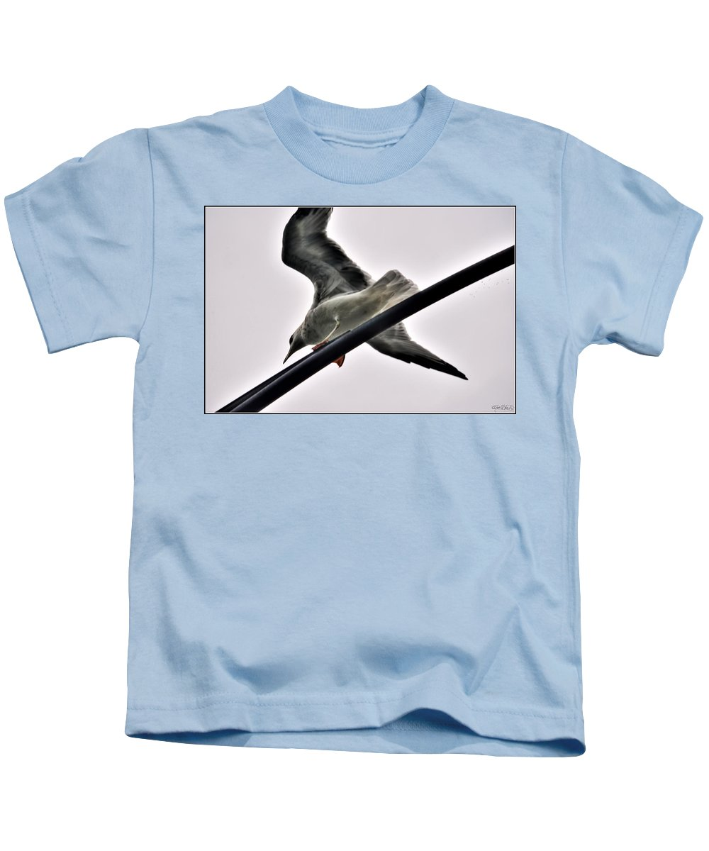 Kids T-Shirt featuring the photograph 002 Gull To Out Do Wallenda by Michael Frank Jr