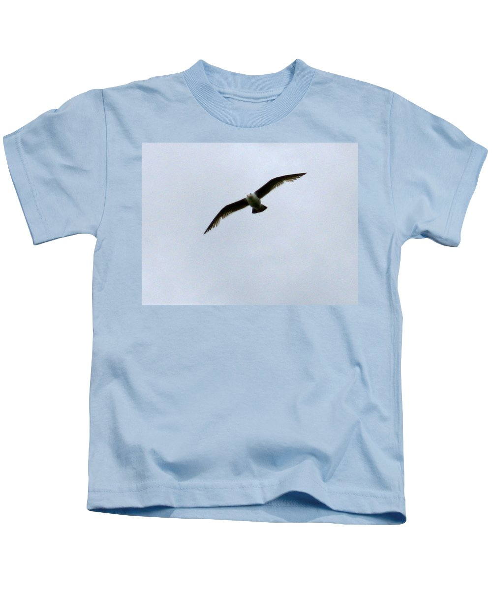 Seagull Kids T-Shirt featuring the photograph Airborne by Linda Hutchins