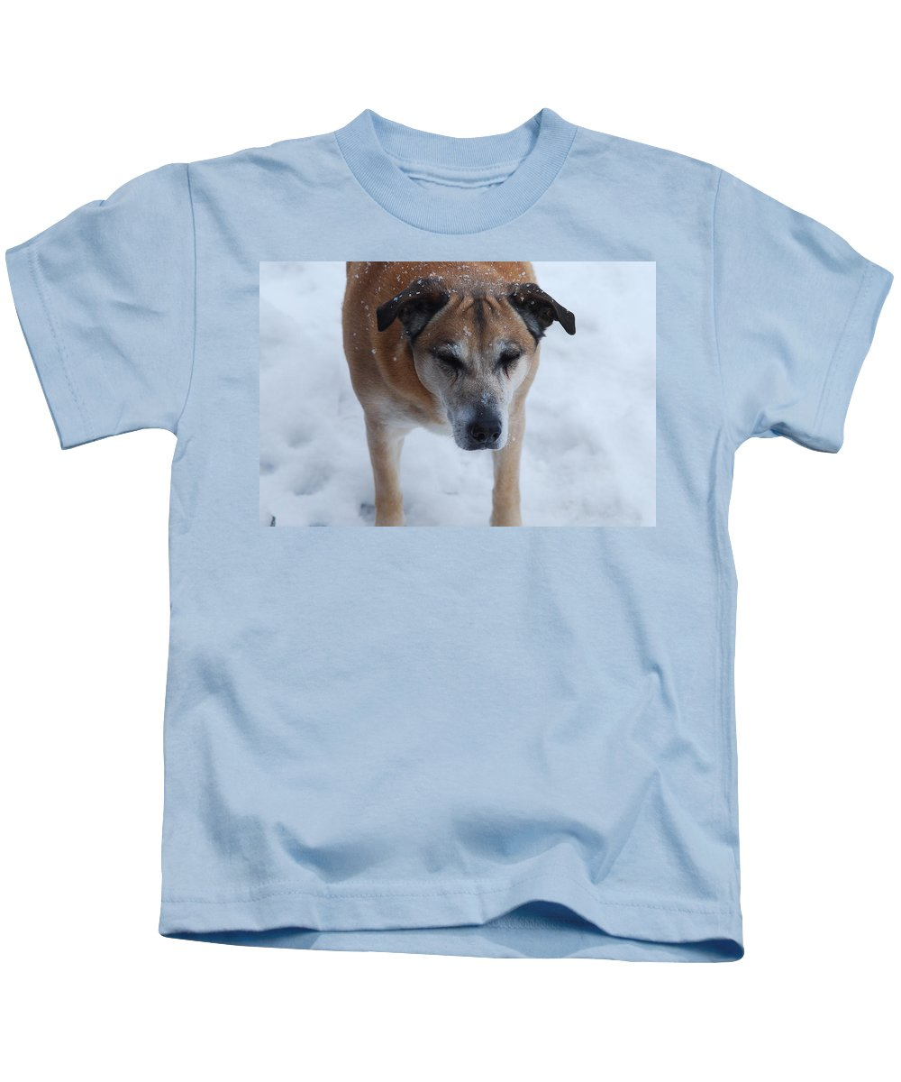 Animals Kids T-Shirt featuring the photograph Boog by Susan Capuano
