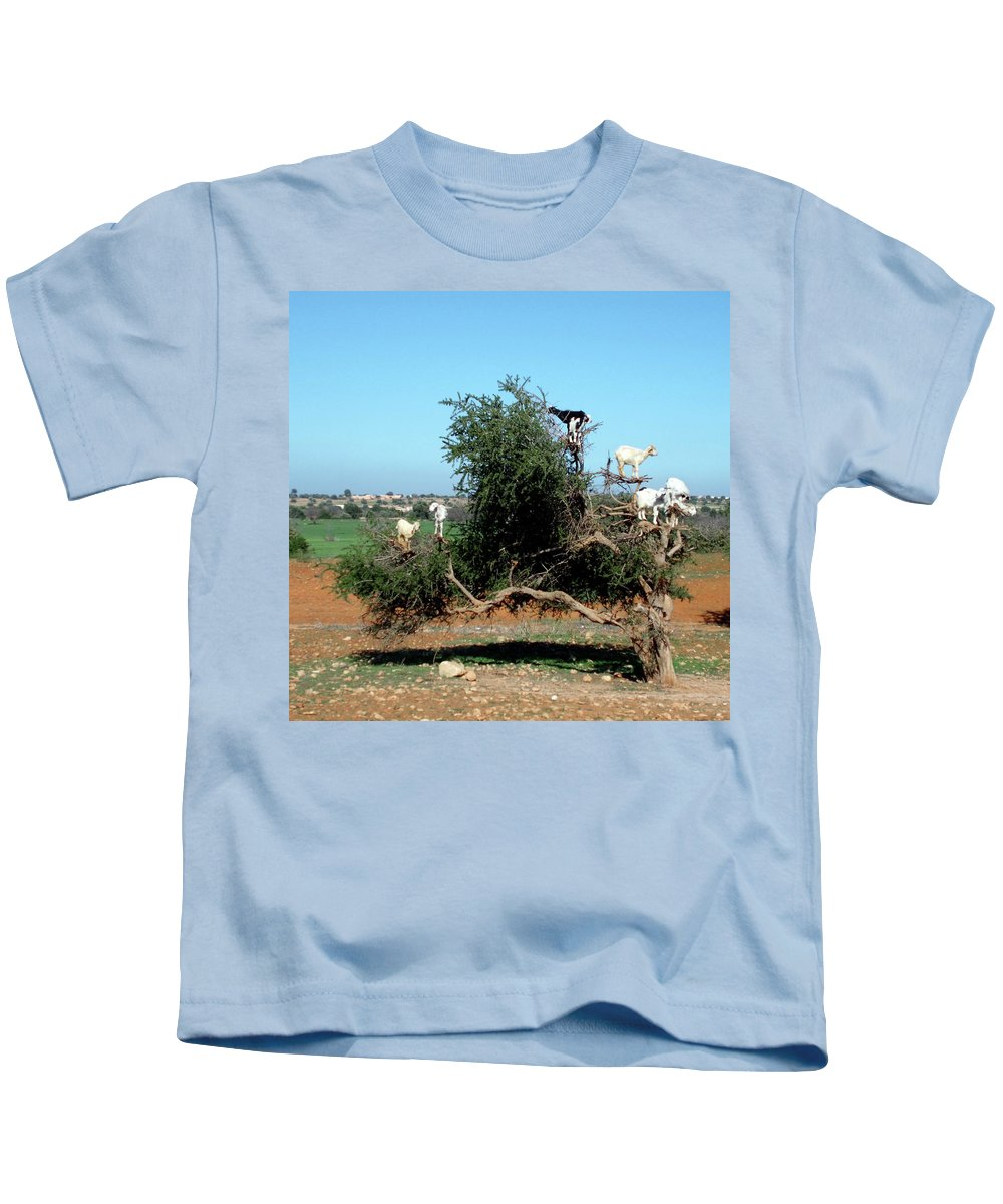 Travel Kids T-Shirt featuring the photograph In Morocco Goats Grow On Trees by Miki De Goodaboom