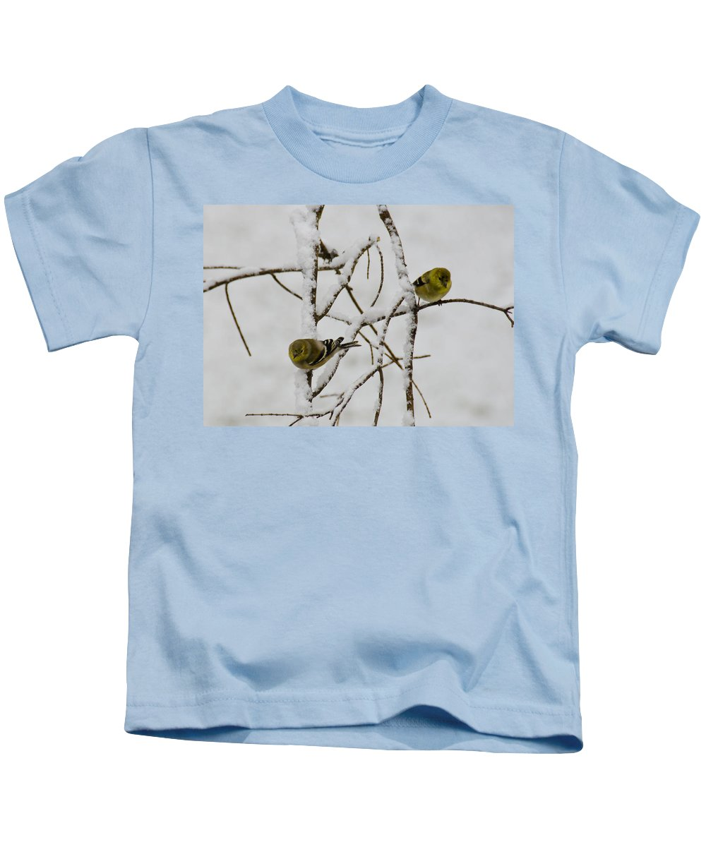 Usa Kids T-Shirt featuring the photograph Is It Snowing On Your Side by LeeAnn McLaneGoetz McLaneGoetzStudioLLCcom