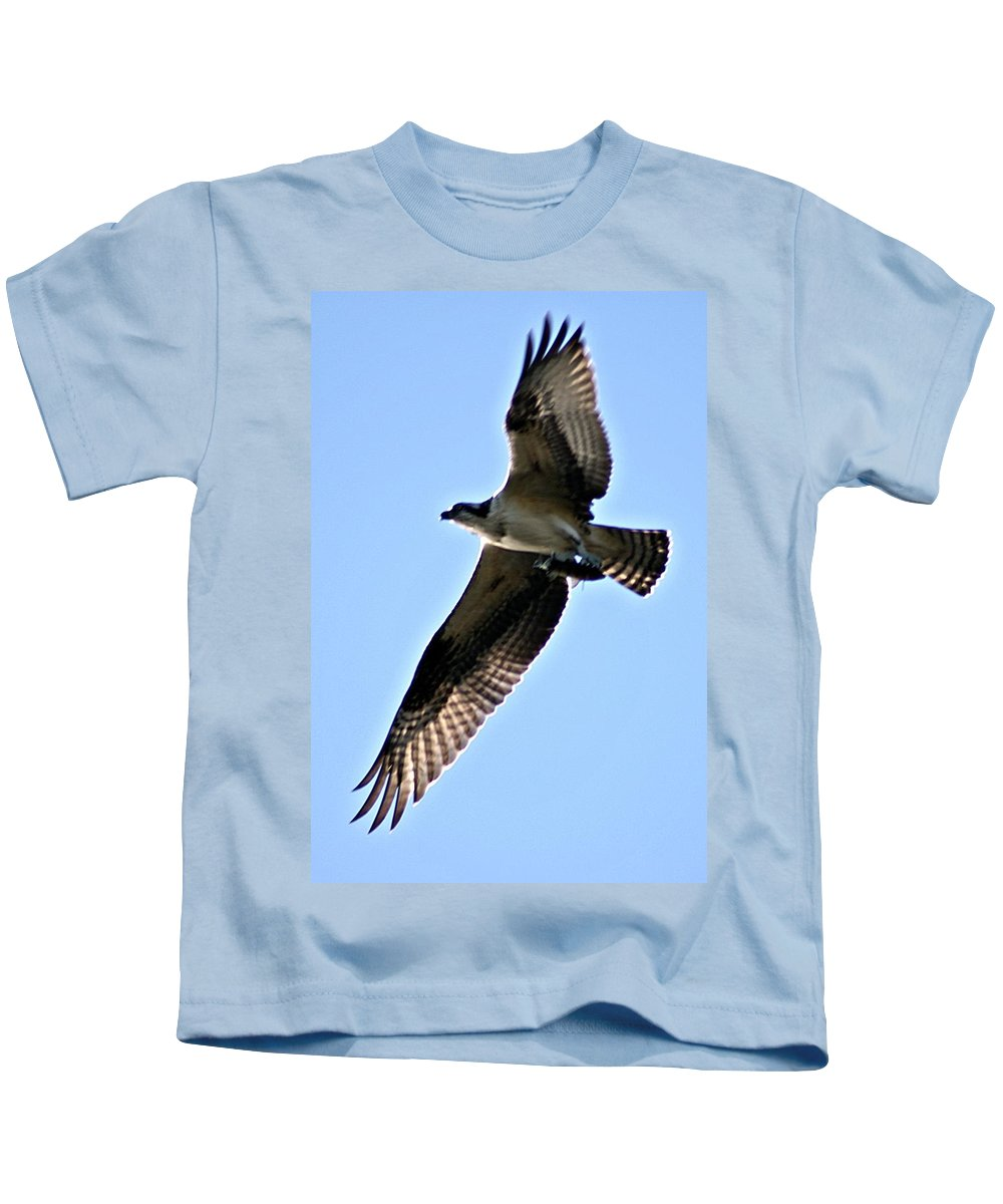 Osprey Kids T-Shirt featuring the photograph Osprey I by Joe Faherty