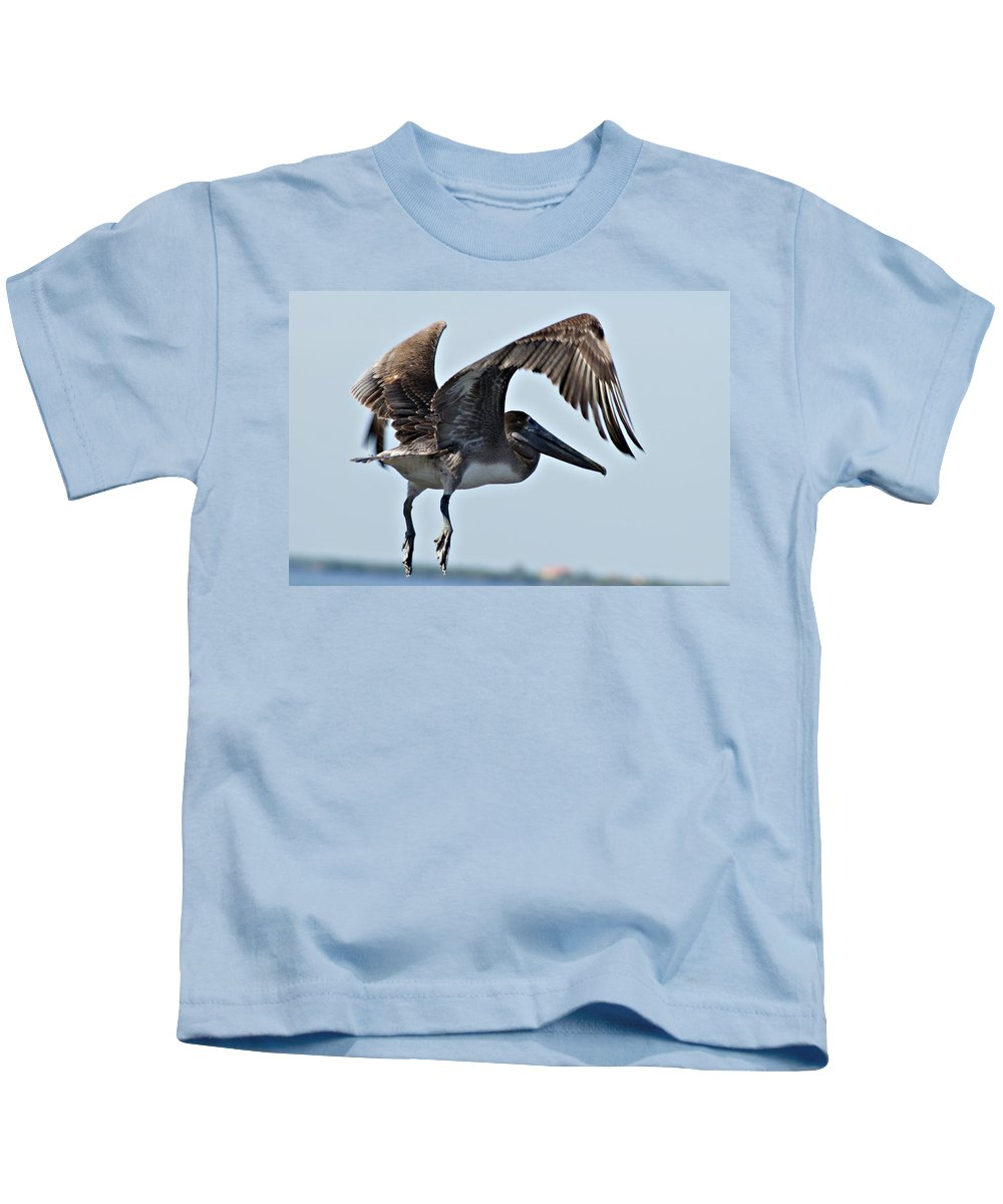 Pelican Kids T-Shirt featuring the photograph Pelican V by Joe Faherty