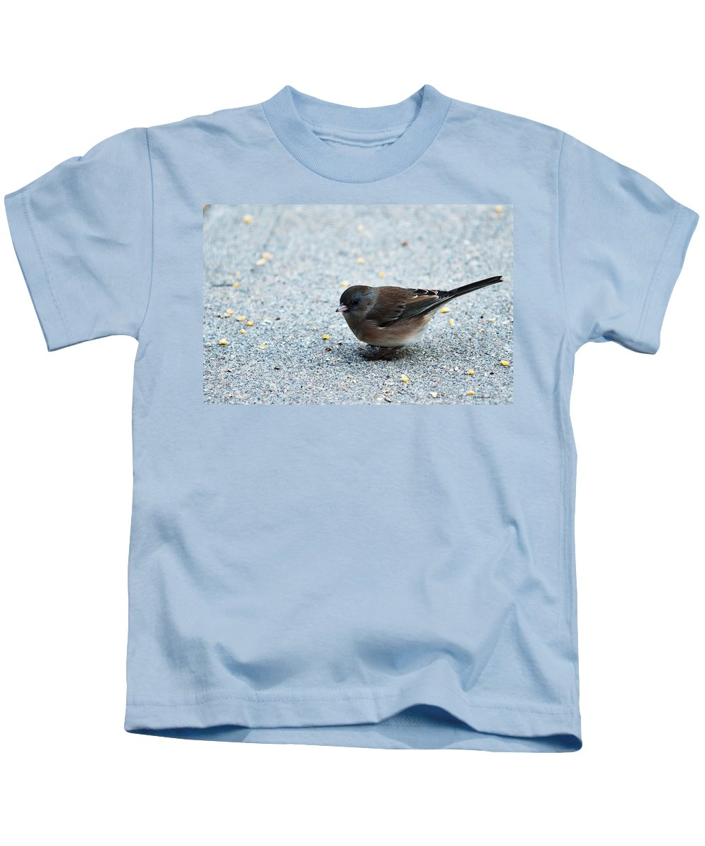 Heron Heaven Kids T-Shirt featuring the photograph Pink-sided Junco by Edward Peterson