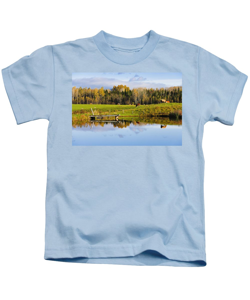 Colour Image Kids T-Shirt featuring the photograph Pond And Cattle Near Mansonville by Yves Marcoux