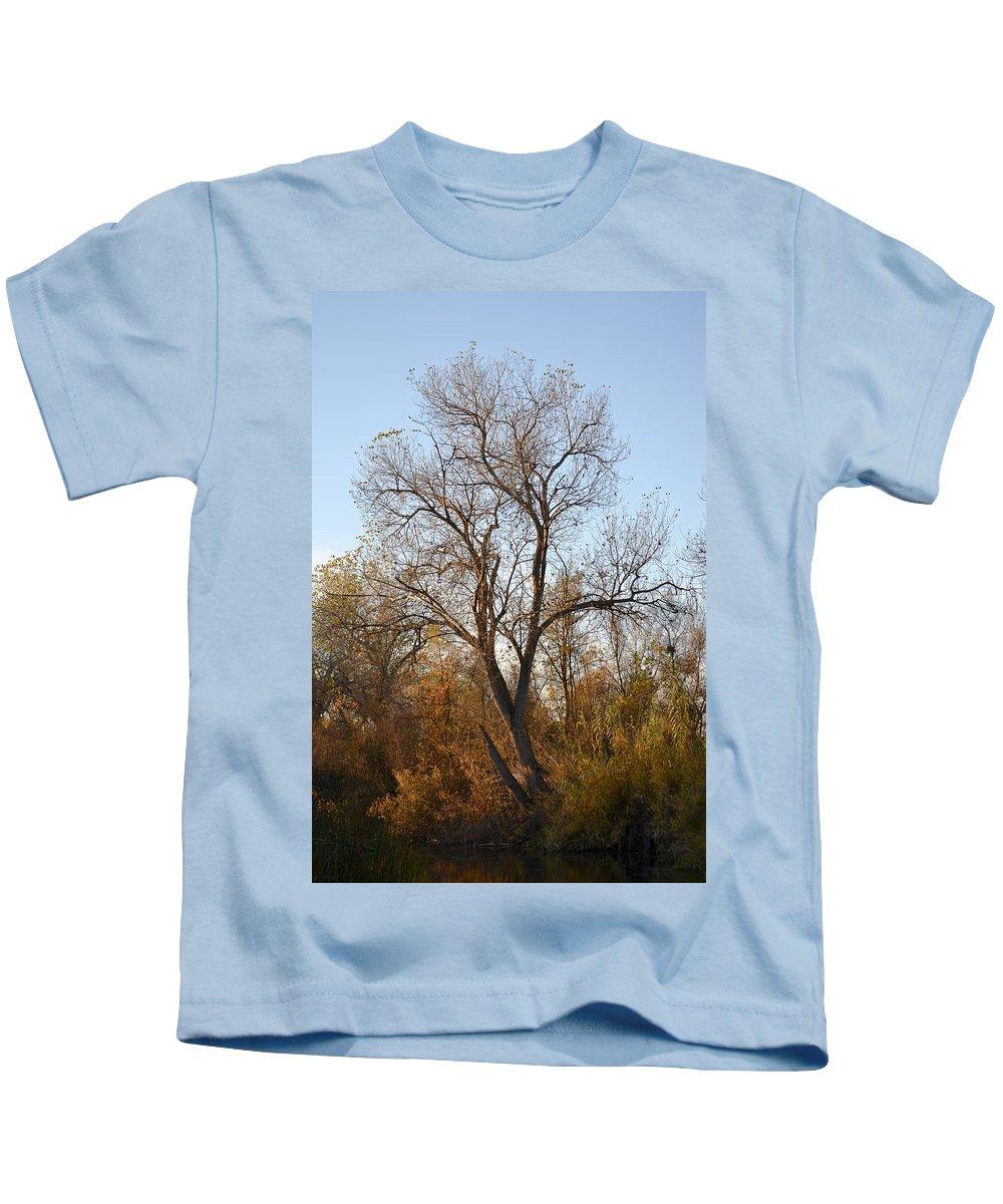 Shadow Cliffs Kids T-Shirt featuring the photograph Shadow Cliff Tree by Karen W Meyer