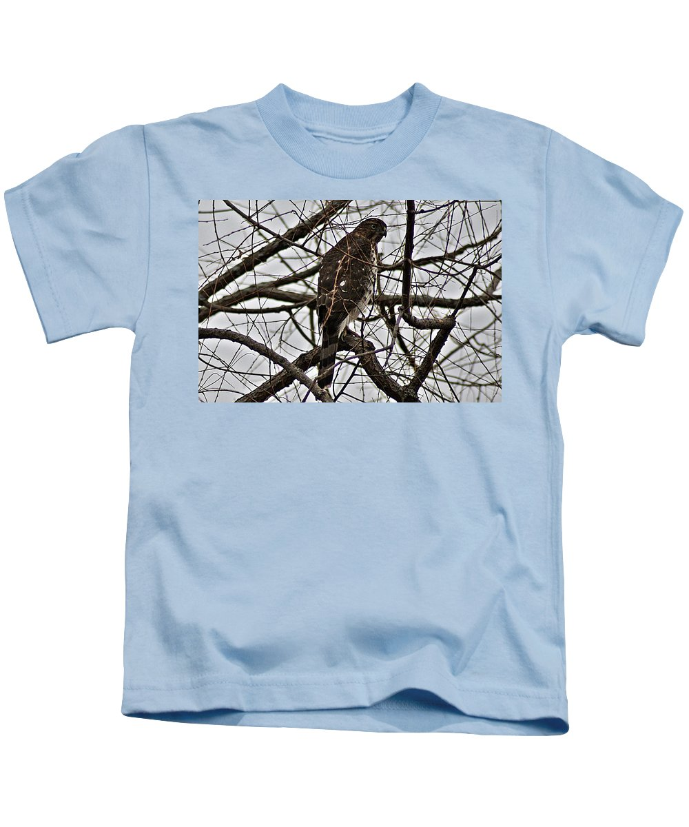 Sharp Kids T-Shirt featuring the photograph Sharp Shinned Hawk by Joe Faherty