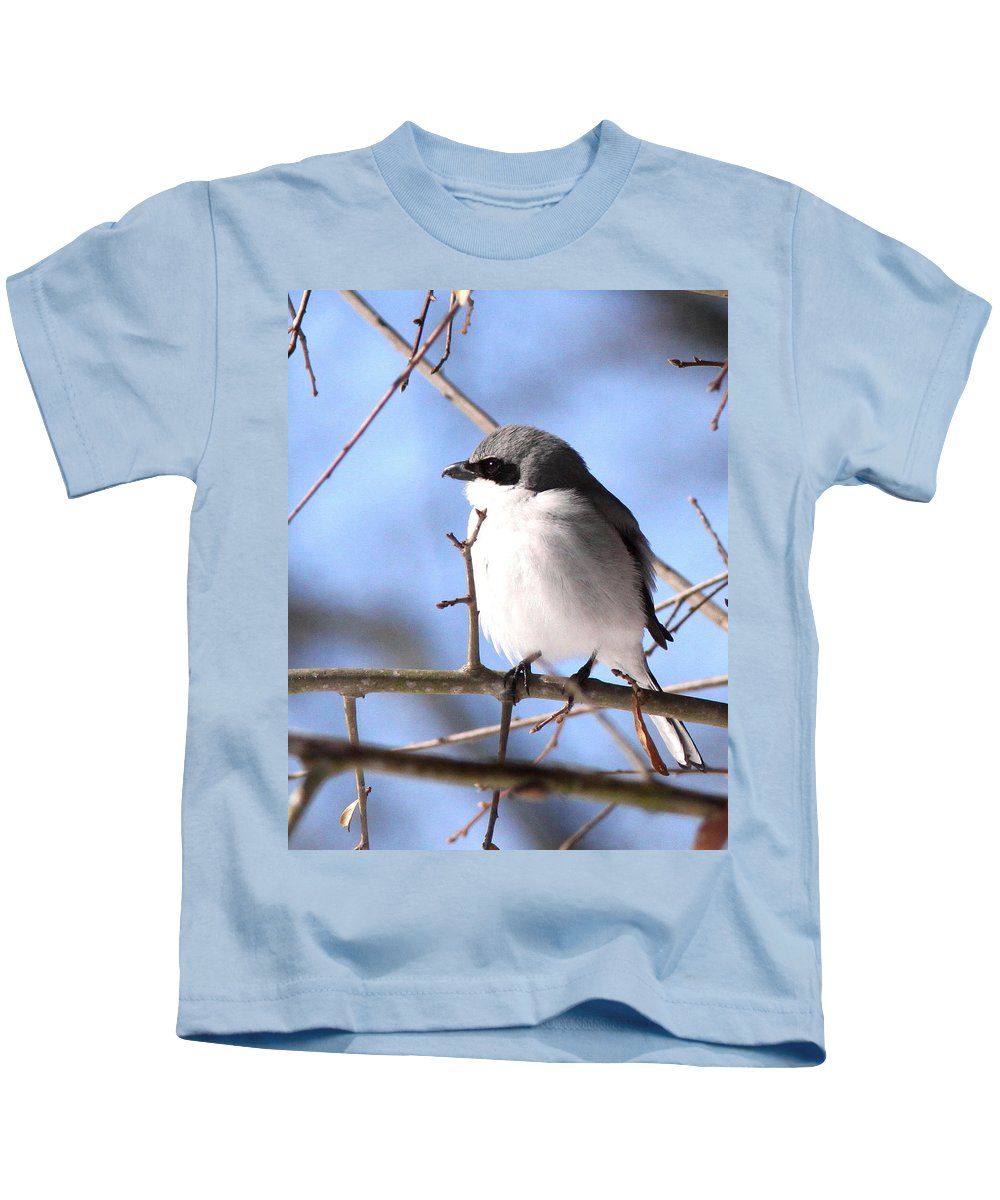 Shrike - Lonely Kids T-Shirt featuring the photograph Shrike - Lonely by Travis Truelove